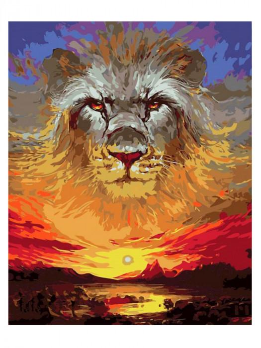 Leeuw 50x40 Schilderen op Nummer