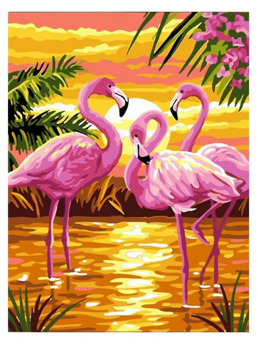 Flamingo 50x40 Schilderen op Nummer